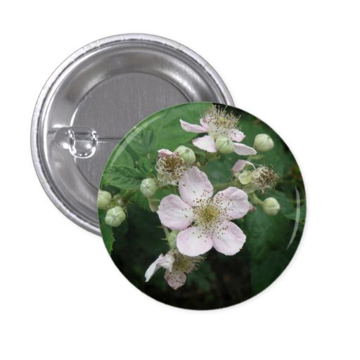Blackberry Flowers Button