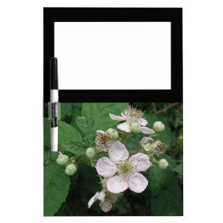 Blackberry Flowers Memo Board
