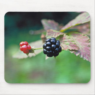 Blackberry Mouse Pad