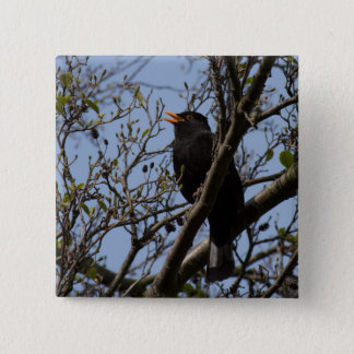 Blackbird 15 Cm Square Badge