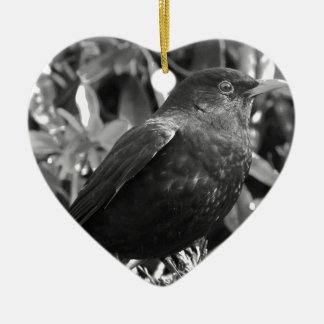Blackbird an black and white ceramic heart decoration