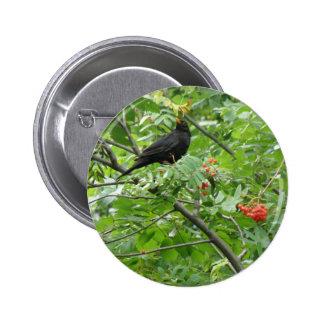 Blackbird and Berries Button