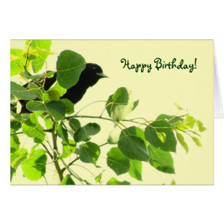 Blackbird Birthday Greeting Card