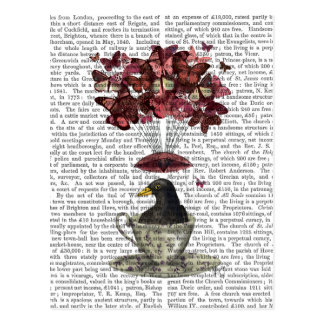 Blackbird In Teacup Postcard