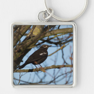 Blackbird Key Ring