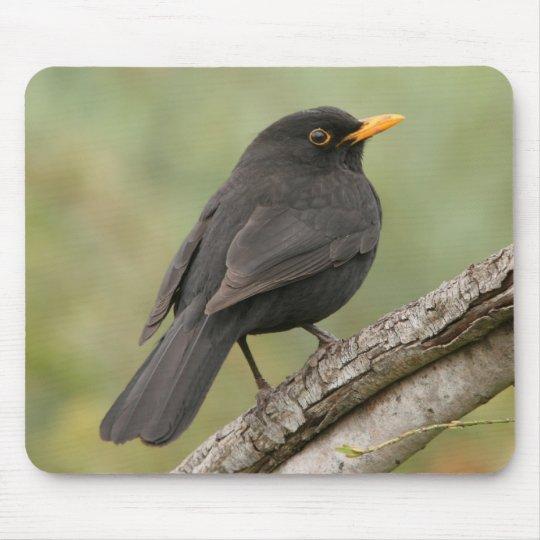 Blackbird Mouse Pad