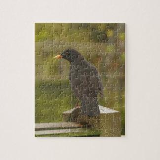 Blackbird Puzzle