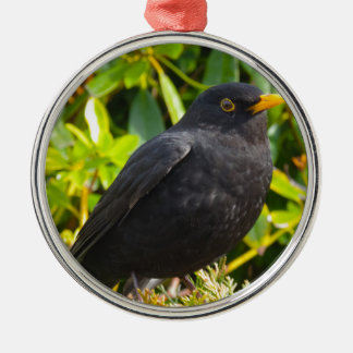 Blackbird Silver-Colored Round Decoration