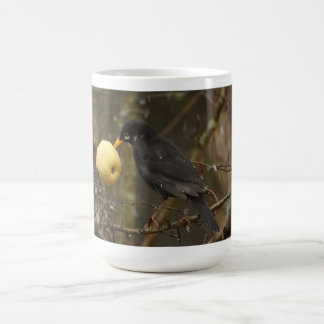 Blackbird with apple Mug