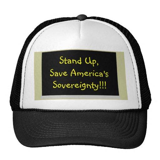blackboard, Save America's Sovereignty!!!, Stan... Mesh Hat