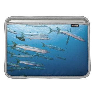 Blackfin Barracuda MacBook Sleeves