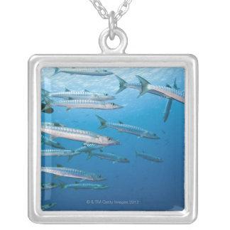 Blackfin Barracuda Silver Plated Necklace