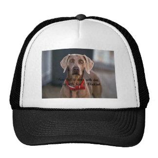 Blackfoot Quote Hat