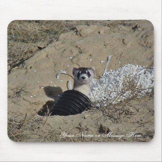 Blackfooted Ferret Mouse Pads
