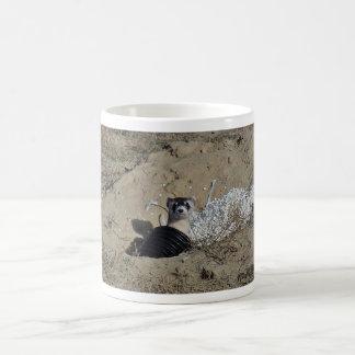 Blackfooted Ferret Coffee Mugs