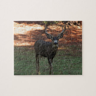 Blacktail Buck Puzzle