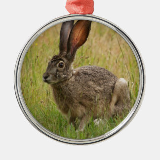 Blacktailed Jackrabbit in Field Silver-Colored Round Decoration