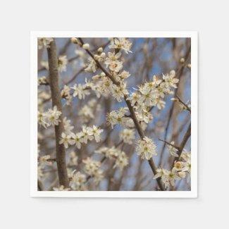 Blackthorn Blossom Floral Paper Napkins
