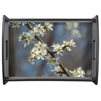 Blackthorn Blossom Serving Tray