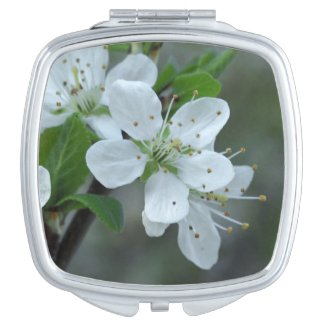 Blackthorn Flowers Compact Mirror