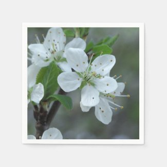 Blackthorn Flowers Paper Napkins
