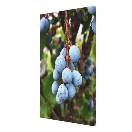 Blackthorn fruit canvas print