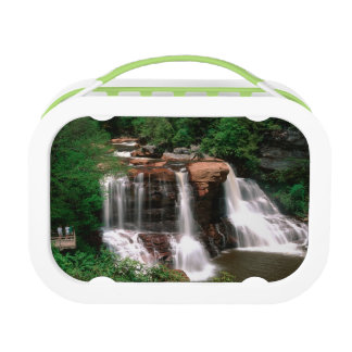 Blackwater Falls, West Virginia, scenic, Lunch Box