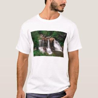 Blackwater Falls, West Virginia, scenic, T-Shirt