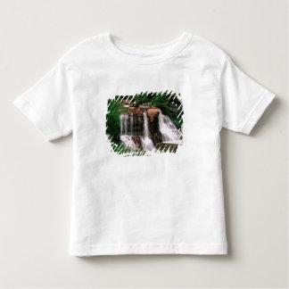 Blackwater Falls, West Virginia, scenic, Toddler T-Shirt