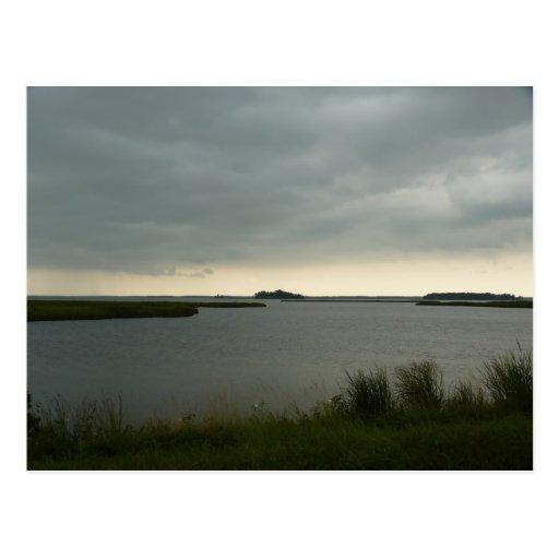 Blackwater National Wildlife Refuge Postcards