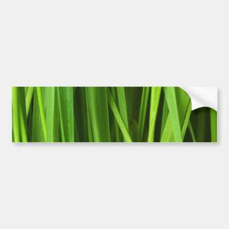 Blades of Grass Bumper Stickers