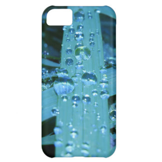 Blades of Grass in Morning iPhone 5C Case