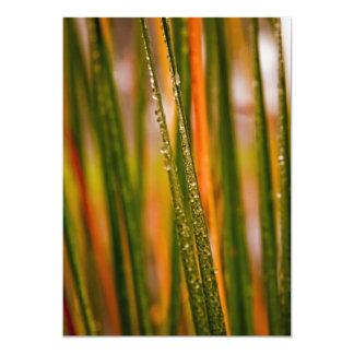 "Blades of grass 5"" x 7"" invitation card"