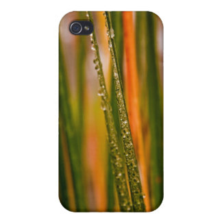 Blades of grass iPhone 4 cases