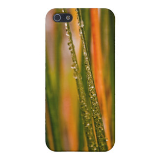 Blades of grass iPhone 5/5S covers