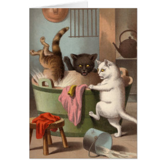 Blank card - Naughty Cat series - Cats Washday