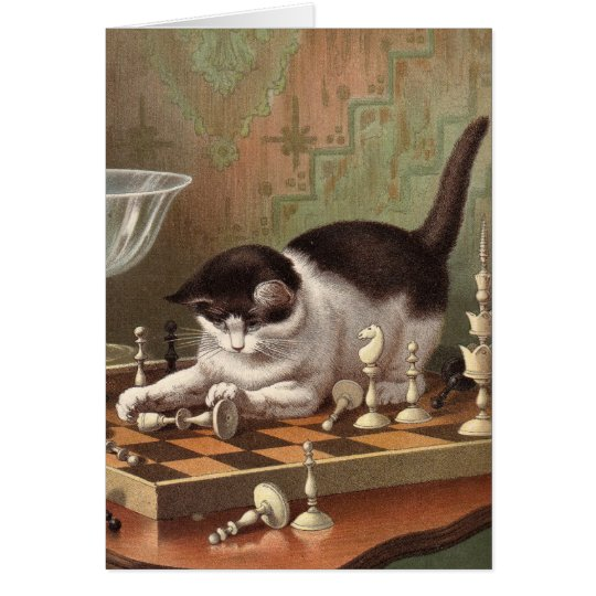 Blank card - Naughty Cat series - Chess Cat
