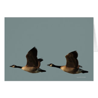 Blank Customizable Flying Geese Card