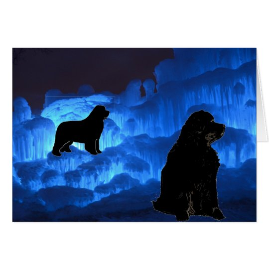 Blank Greeting ~ Newfies on Ice Card