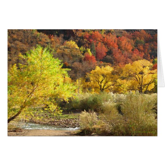 Blank Inside Autumn in Zion Greeting Card