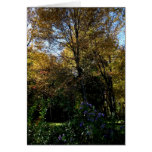 Blank_Mauve Tree Card