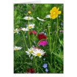Blank Note Card: Spring Wildflowers Greeting Card