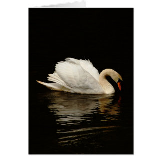 Blank Note Card with Beautiful Swan
