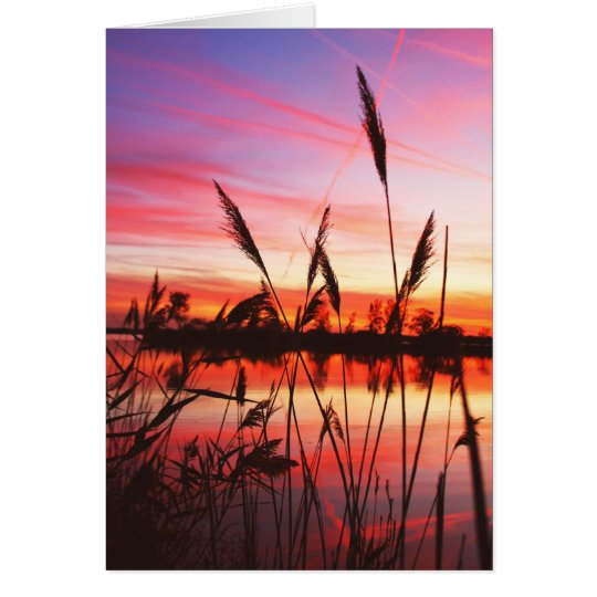 Blank Note Greeting Card