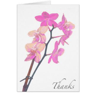 Blank Pink Orchid Thank You Card