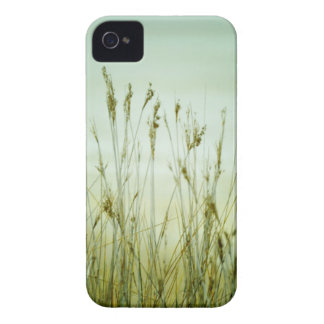 blank products grass iPhone 4 Case-Mate cases