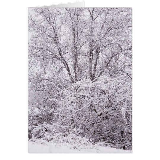 Blank Winter Scene Card