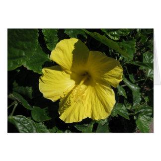 Blank_Yellow Shadow Card