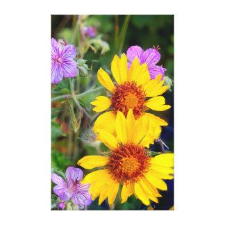 Blanket flower aka brown eyed susan and stick canvas print