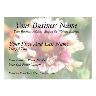 Blanket Flower Bloom Pack Of Chubby Business Cards